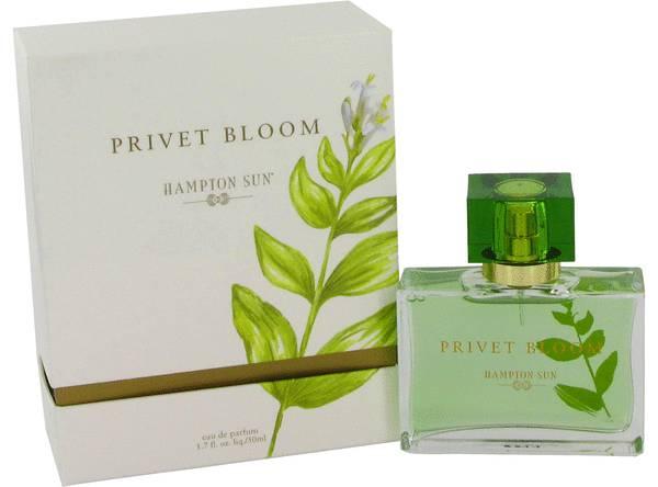 perfume Privet Bloom Perfume