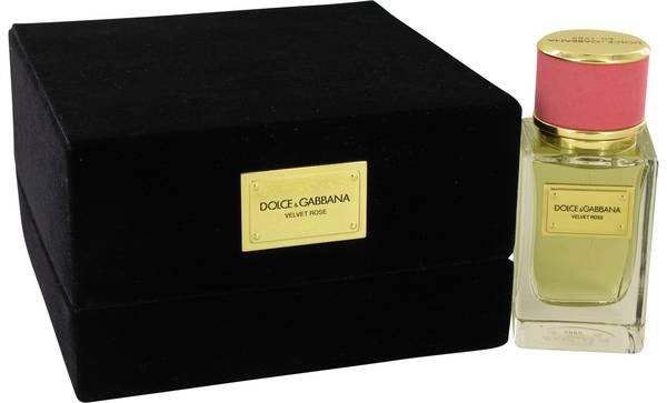 perfume Dolce & Gabbana Velvet Rose Perfume