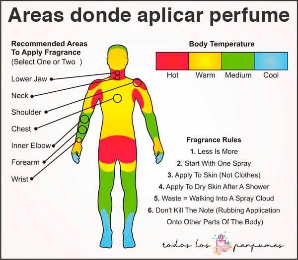 Areas donde aplicar perfume - lista de perfumes