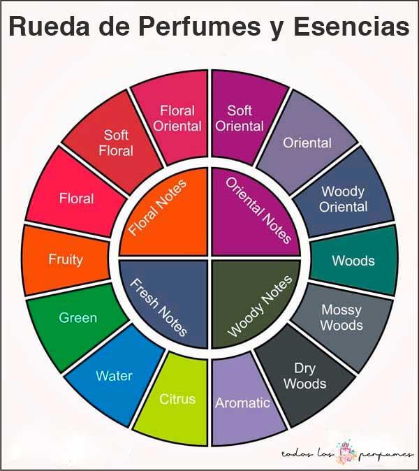 Rueda de perfumes y esencias - todos los perfumes