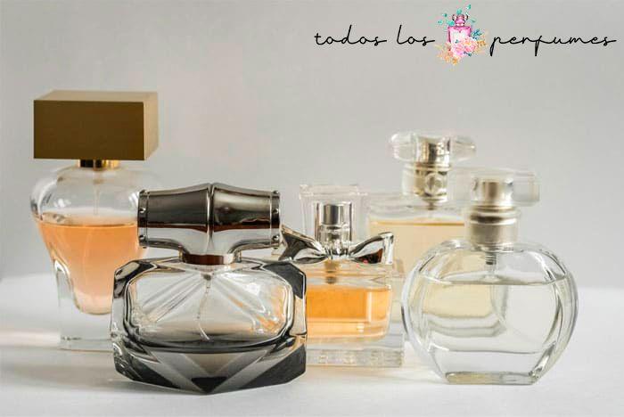 guía definitiva de los mejores perfumes de mujer