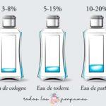 concentración de fragancia - todos los perfumes