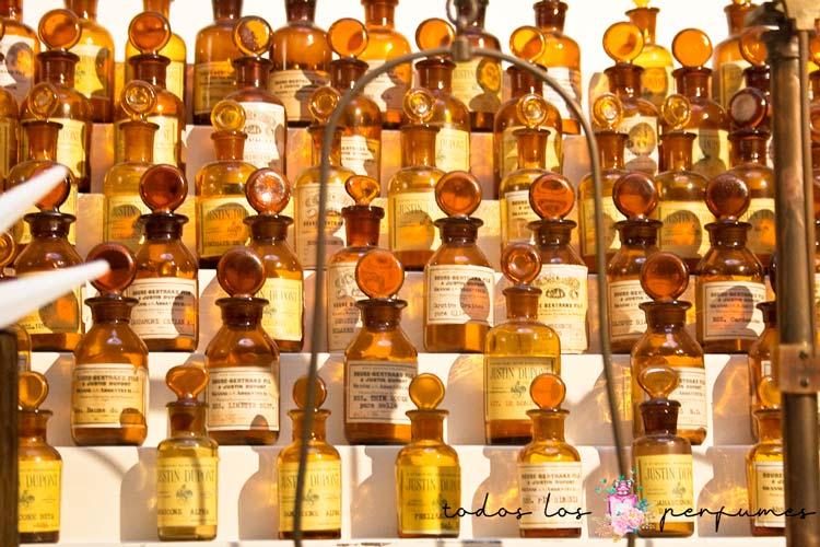 concentración de fragancias - todos los perfumes
