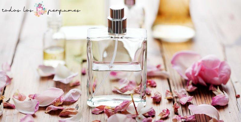alergias al perfume - todos los perfumes